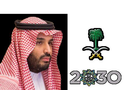 إختيار صاحب السمو الملكي الأمير محمد بن سلمان وليا للعهد